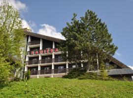 Horský hotel Hanička, hotel near Ski Areal Hromovka, Špindlerův Mlýn