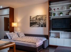 StudioApart4 Elbląg, apartment in Elblag