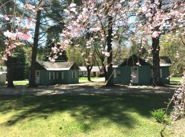Pine Valley Cabins, motel in Thornton