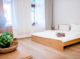 Apartment Dora, apartment in Chemnitz