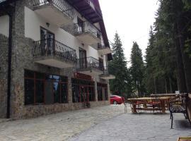 Cabana Haiducilor, guest house in Ranca