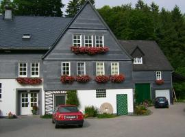 Ferienwohnung zur Mühle, Ferienwohnung in Olsberg