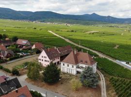 gîtes au domaine Greiner, villa à Mittelwihr