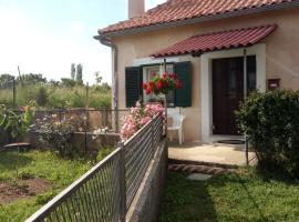 Holiday Home Goga, holiday home in Drniš