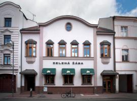 Penzion Zelená Žába, hotel near Pardubice Airport - PED,