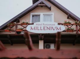 Hotel-Restaurant Milenium, hotel in Salonta