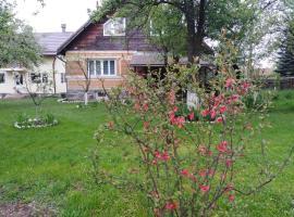 Casa traditionala Subcetate, pensiune din Subcetate