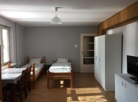 Noclegi Tulipan, hotel in Konin