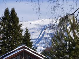 Himoshovi Cottages, hotelli kohteessa Jämsä lähellä maamerkkiä Himoksen matkailukeskus