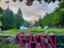 Fain, luxury tent in Lunca Bradului