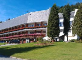 Horský Hotel Neptun, hotel in Malá Morávka