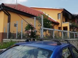 Casa Darius, hotel in Orşova
