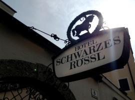 Hotel Schwarzes Rössl, hotel near Salzburg Museum, Salzburg