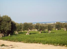 Masseria Ricci, country house in Fasano