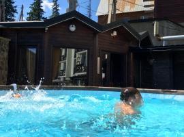 Hotel Adrenalin, отель в Драгобрате