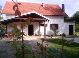 Apartment Smoljanac 12345c, hotel in Smoljanac