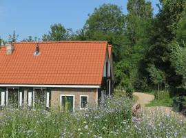 Het Kunstenaarshuis, holiday home in Kamperland