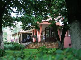 Гостиница Полисть, отель в Старой Руссе
