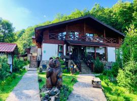 Chalet Vedmezhe, hotel in Polyana