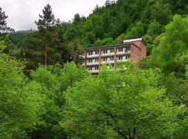 Lori Resort, hotel in Vanadzor