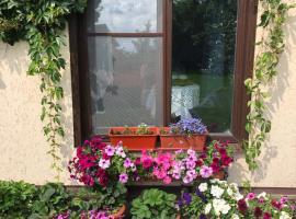 Guest house Dalnyaya 11, отель, где разрешено размещение с домашними животными в Костроме