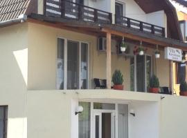 Pensiunea Krystinne, hotel in Hunedoara