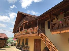 Casa Teodor, hotel in Câmpulung Moldovenesc