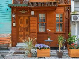 Wonder Wood Hotel, B&B in Istanbul