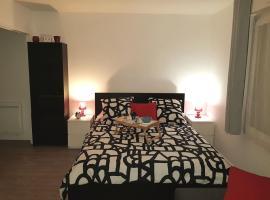 Appartement centre ville proche Paris Disney Vincennes transports, hotel near Hippodrome de Vincennes, Joinville-le-Pont
