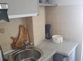 Apartments iris, pet-friendly hotel in Brela