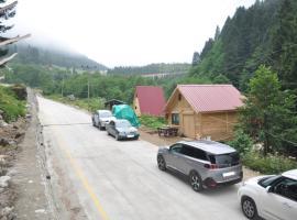 Lorant dağ evleri, hotel in Çamlıhemşin