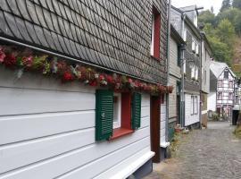 HIER & JETZT in Monschau City, guest house in Monschau
