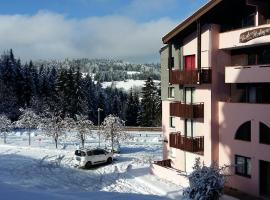 Appartement dernier étage au pied des pistes HIRMENTAZ, hôtel à Bellevaux