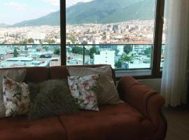 Mountains view, apartment in Bursa