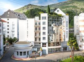 Hôtel Acadia, hotel near Notre Dame de Lourdes Sanctuary, Lourdes