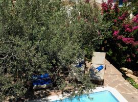 Anemone Residence, pet-friendly hotel in Poros