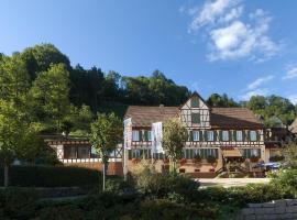 Hotel-Gasthof Zum Weyssen Rössle, boutique hotel in Schiltach