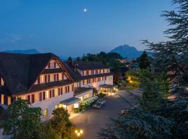Hotel Balm, hotel in Lucerne