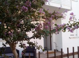 The judas trees, villa in Mestre