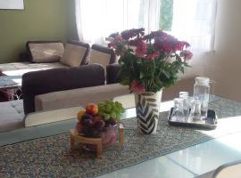 Apartment Leśniczówka – apartament w Radomiu
