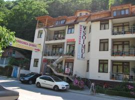 Pensiunea Soimul, accessible hotel in Băile Herculane