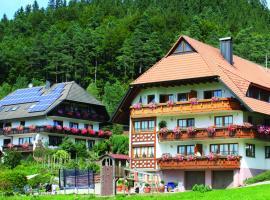 Schlosshof - der Urlaubsbauernhof, farm stay in Elzach