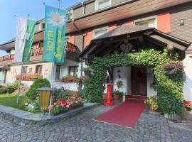 Hotel Silberdistel, hotel in Hinterzarten