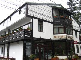 Hotel Regina, hotel din Sinaia