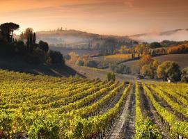 Agriturismo Mormoraia, farm stay in San Gimignano