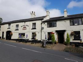 Black Dog Inn, guest house in Bolton
