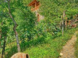 Sadmeli Winery, guest house in Ambrolauri