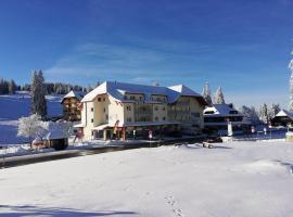 Feldberg Lodge, cabin in Feldberg