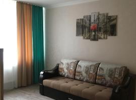 Апартаменты на Центральной 17, family hotel in Shchelkovo