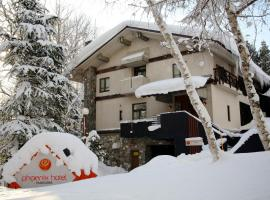 PHOENIX HOTEL by Hakuba Hotel Group, hotel in Hakuba